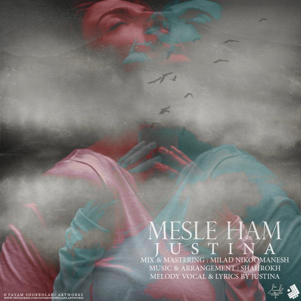 Mesle Ham